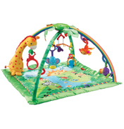 Rainforest Melodies & Light Deluxe Gym